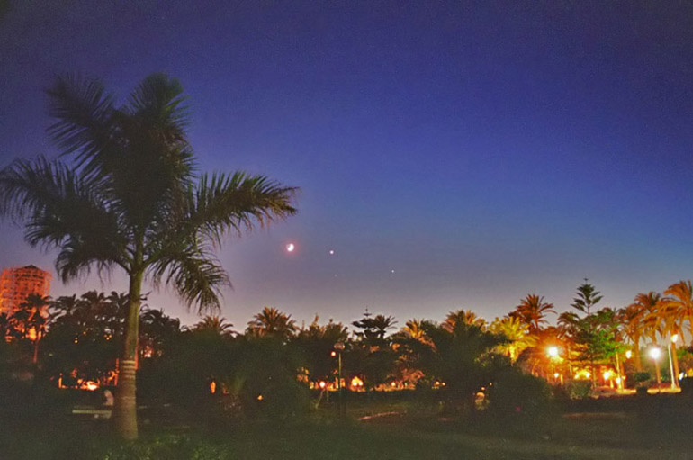 Planets and Palm Trees - by: Aymen Ibrahem (Canon Camera, Kodak Ultra 400 film, 1 second exposure)