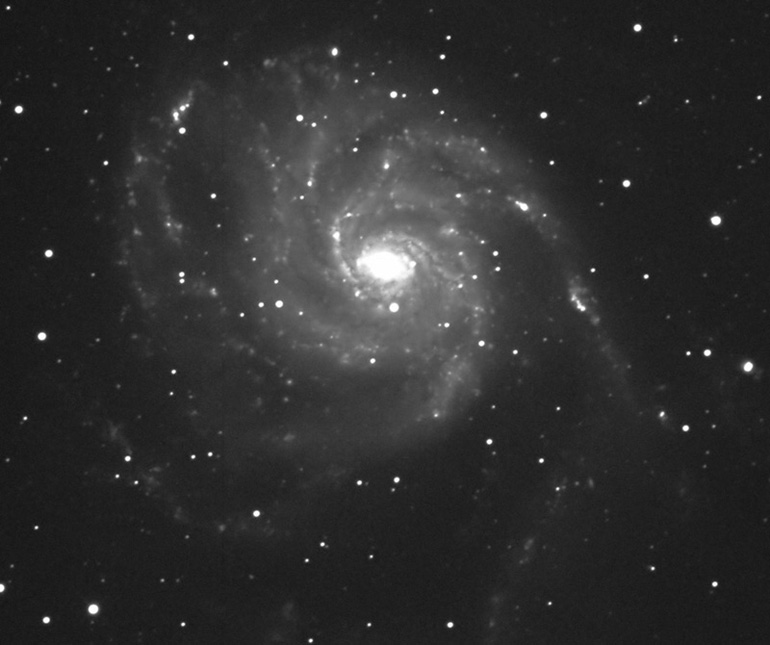Galaxy M101 by Ricky Murphy. 20 inch RC telescope, STL-11000 camera, 5 minute exposure.